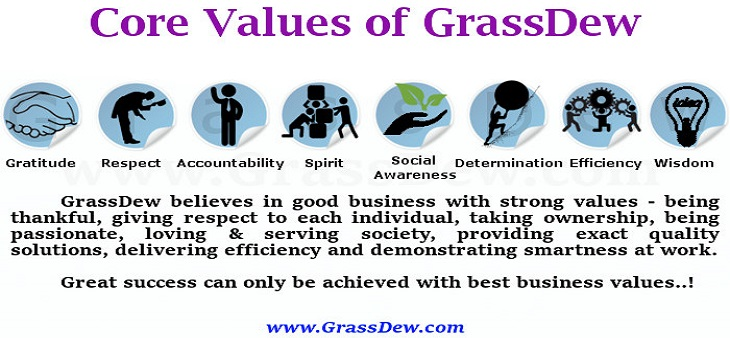 8 Core Values of GrassDew IT Solutions