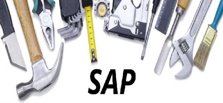 GrassDew provide Maintenance & Production Support for your SAP...!